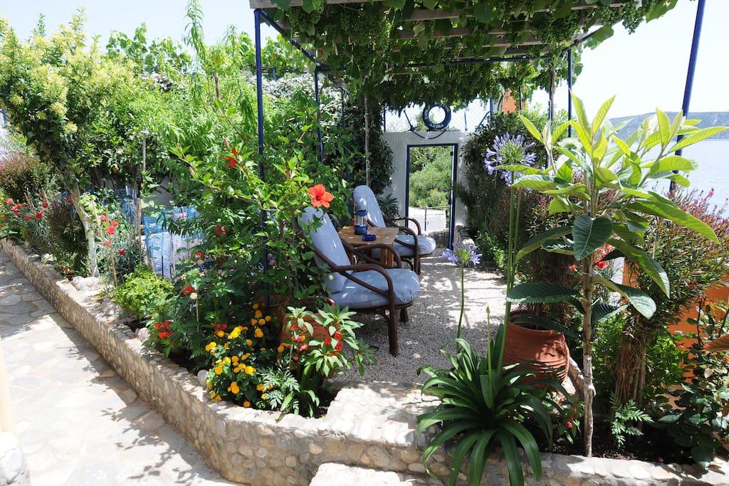 Fenced Garden at The Beach House