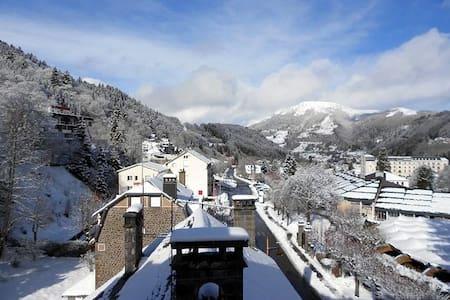 Les Sapins idéal skis - cures centre du Mont-Dore - Apartamento