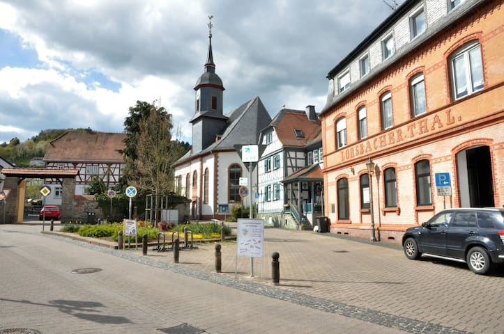 High-quality apartment in historic surrounding - Hofheim am Taunus - Apartament