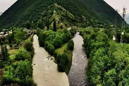Georgia Nature OF Mountain