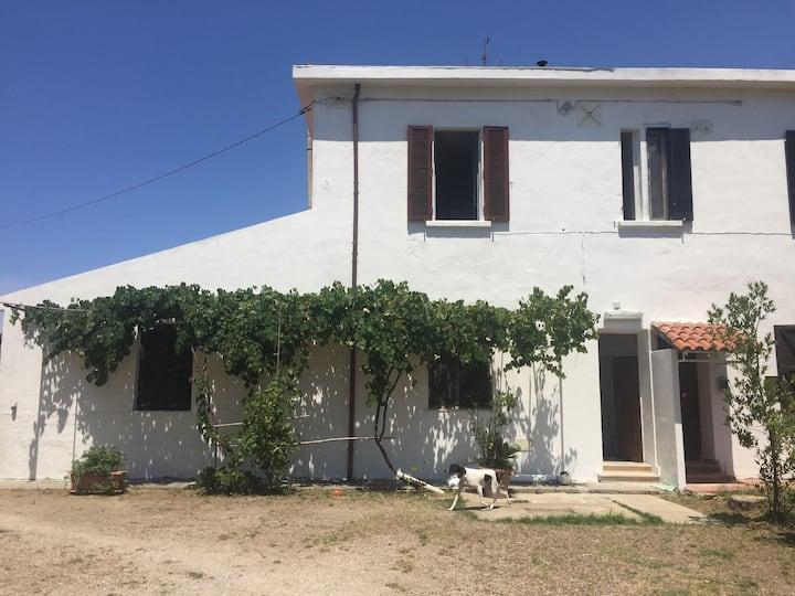 Ferienhaus in Piombino - Casa Colmata