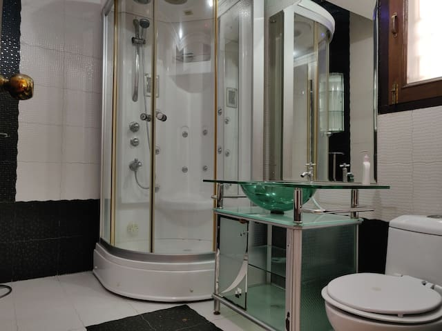 The washroom with shower cubicle.