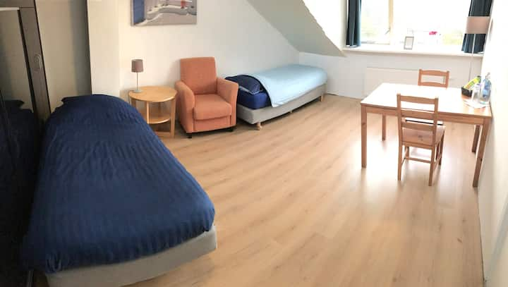 Spacious room- 19min from city center-busstop 1min
