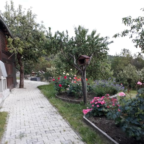 Lovely house with garden on the Grand Colombier