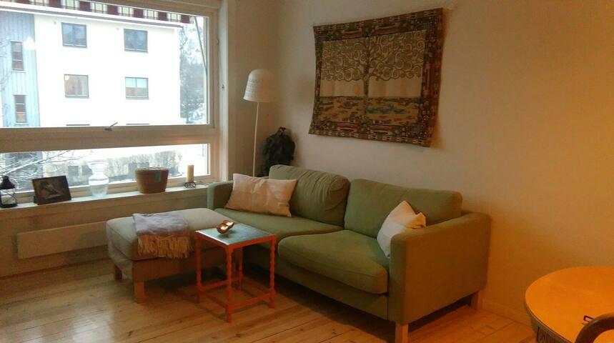 Pent rom i moderne leilighet - Oslo - Appartement