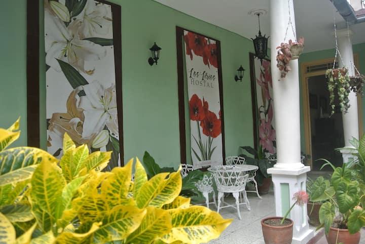Los Lirios-Room 1