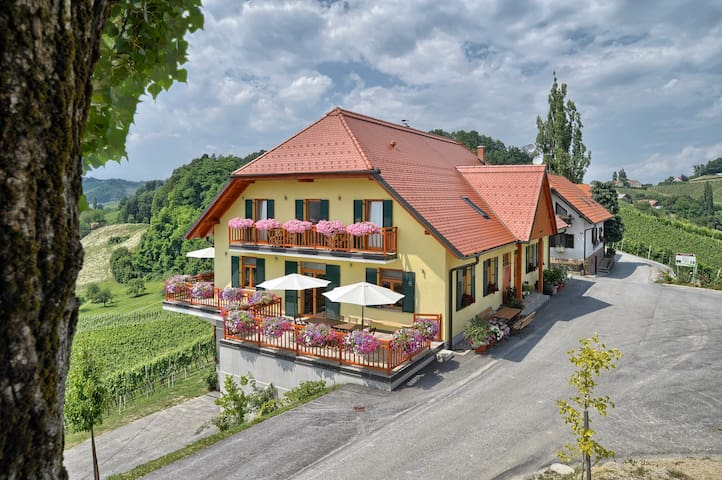 Soba z balkon nad vinogradi