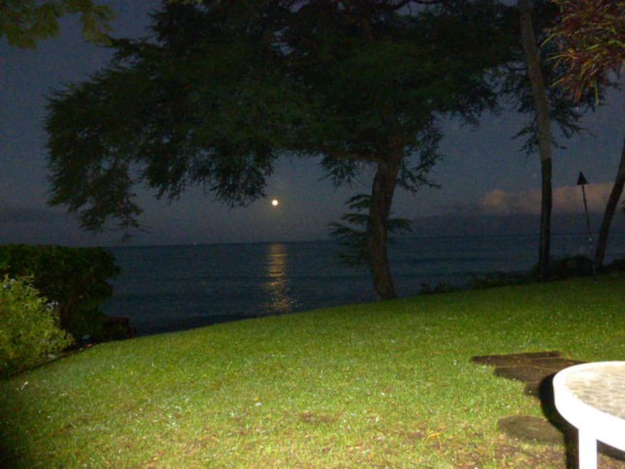 why sleep when you can watch the moon settle into the ocean