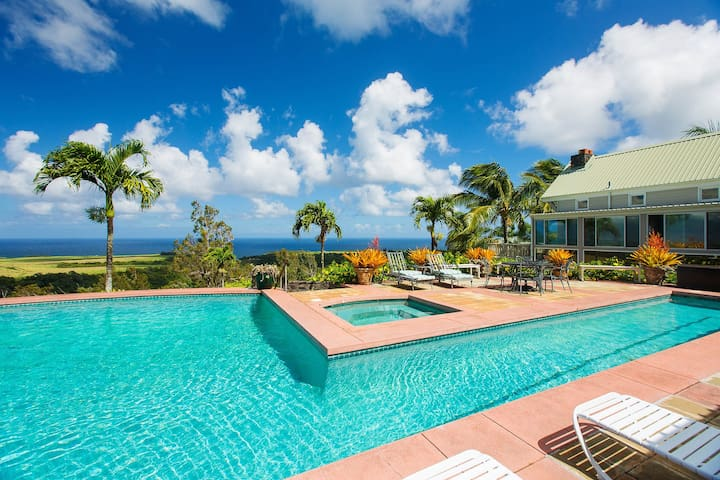 Pool, hot-tub, huge ocean view, fruit orchard.