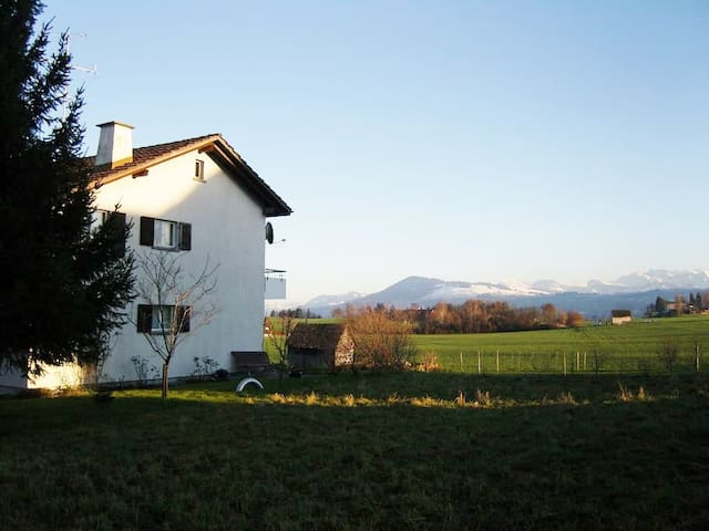 apartment in Wädenswil near Zurich - Wädenswil - Wohnung