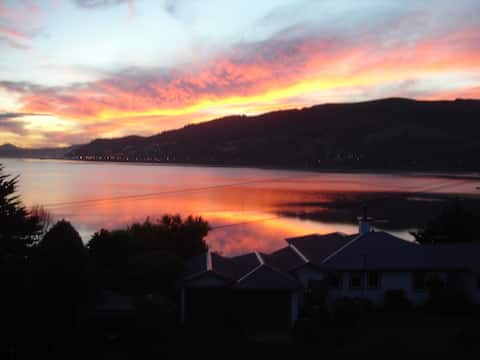 Otago Harbour Panorama