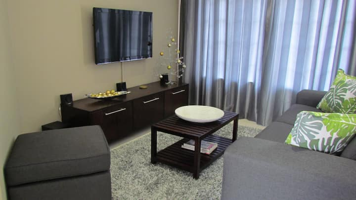 Comfortable Furnished Apartment Wi-Fi+Free Parking