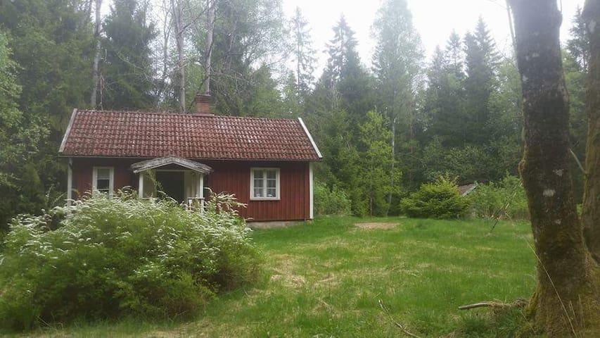 eine Hütte im Wald