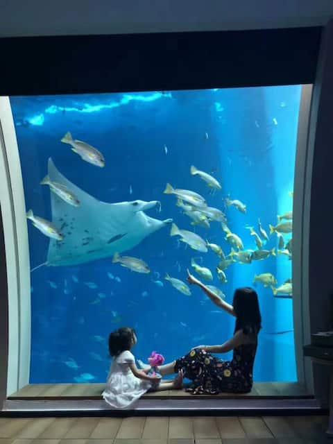 Singapore Resorts World Sentosa Ocean Suite圣淘沙海底套房
