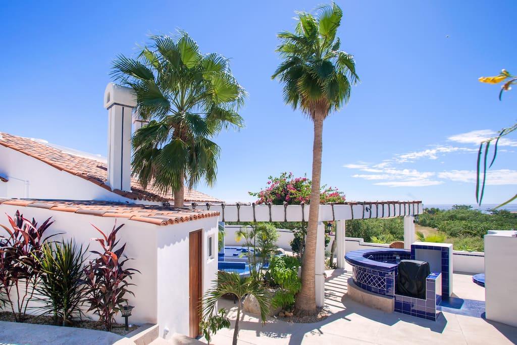 Large beautifully landscaped backyard
