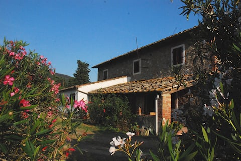 """Apartment Samuele in """"Casa al Vento"""""""