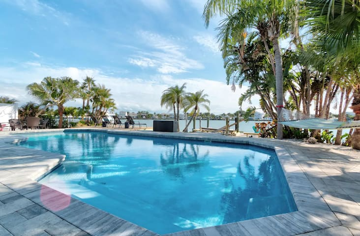 Spot dolphins from your own private pool! Upscale!