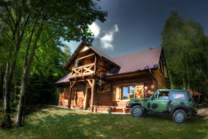 Witalna Osada Helonowo - Ustrzyki Dolne - Chalet