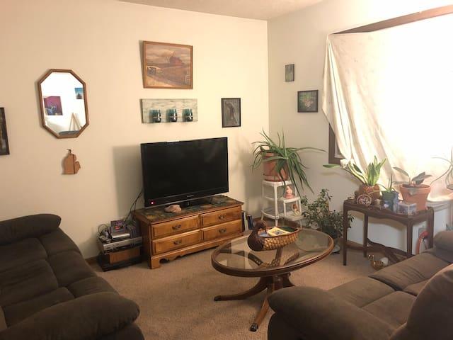 Cozy apartment on Ridge St