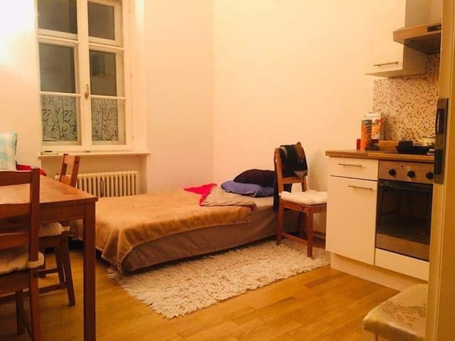 Comfortable Appartment next to the City Centre