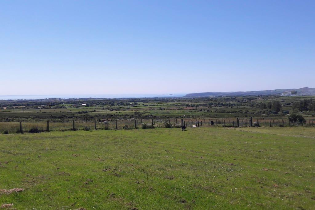 Stunning views towards Cardigan Bay