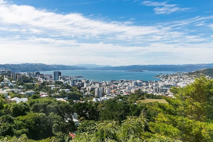 Wellington with harbour view, sun & privacy