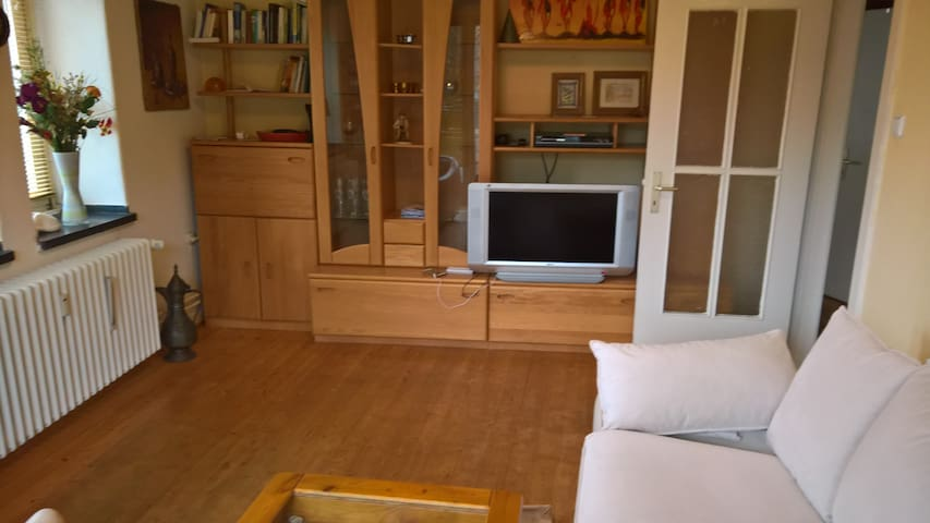 fully furnished beautiful 2 room apartment