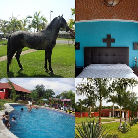 Jardín Rancho Ixtla Las Palmas 4