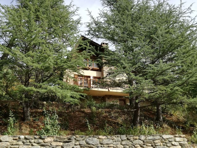 A house / cottage in the mountain. - Sort - Talo