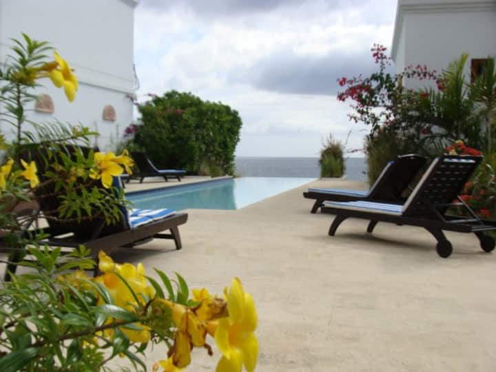Beautiful and Elegant Two-Story Beach Villa Rincon