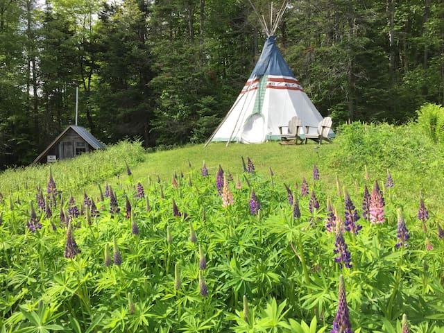 Tipi in Central Vermont(Strafford)