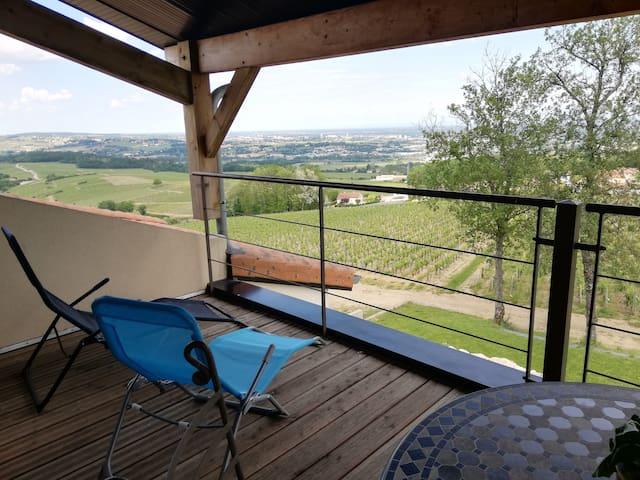Au coeur des vignes avec vue panoramique