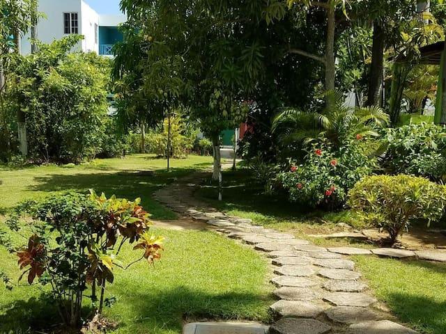 Garden area below