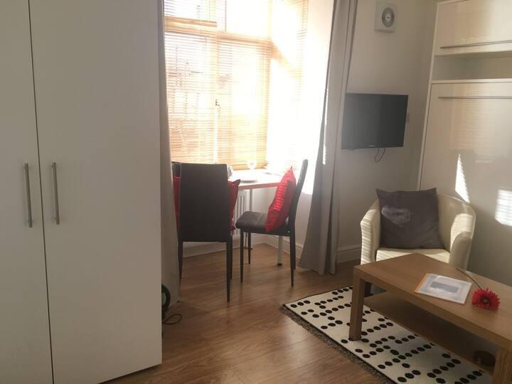 Economical Studio Flat  - 10 mins central London
