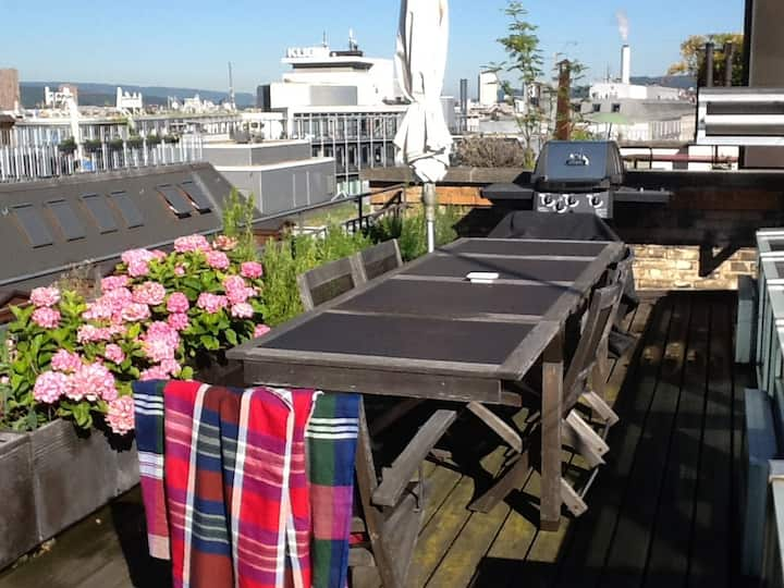 Flat with wonderful rooftop in Zürich center!