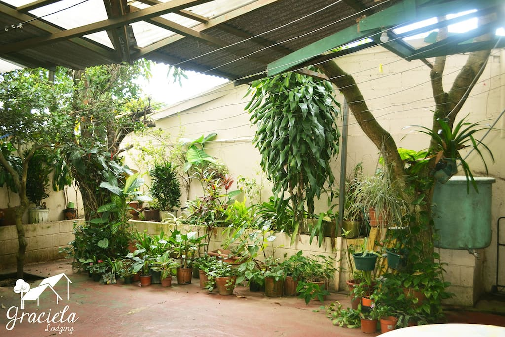 Small indoor patio at the back of the home.