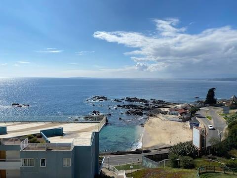 Maravilloso departamento  en Concon frente al mar.