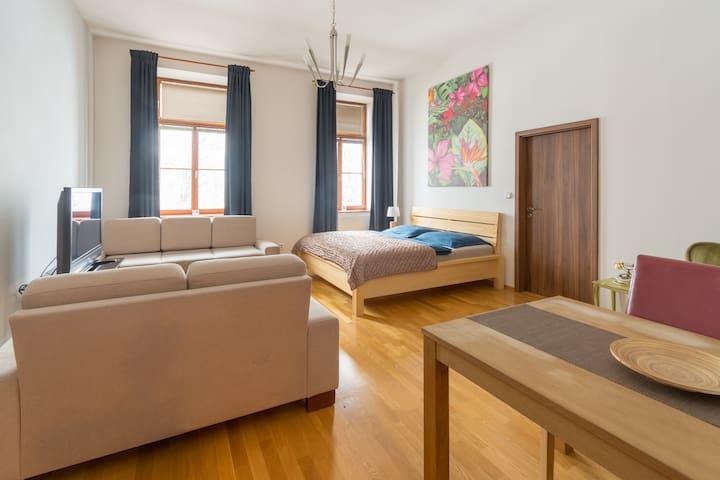 Apartment Sirius D in the centre ČB