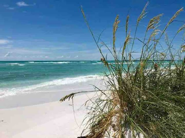 The Gulf shore beaches of Pinellas county with their white sands are just 8 miles away..