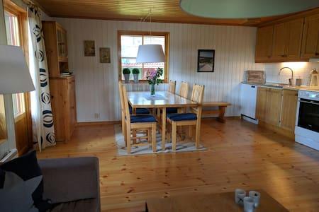 Skidåkning i Lofsdalen - Lofsdalen - Hus