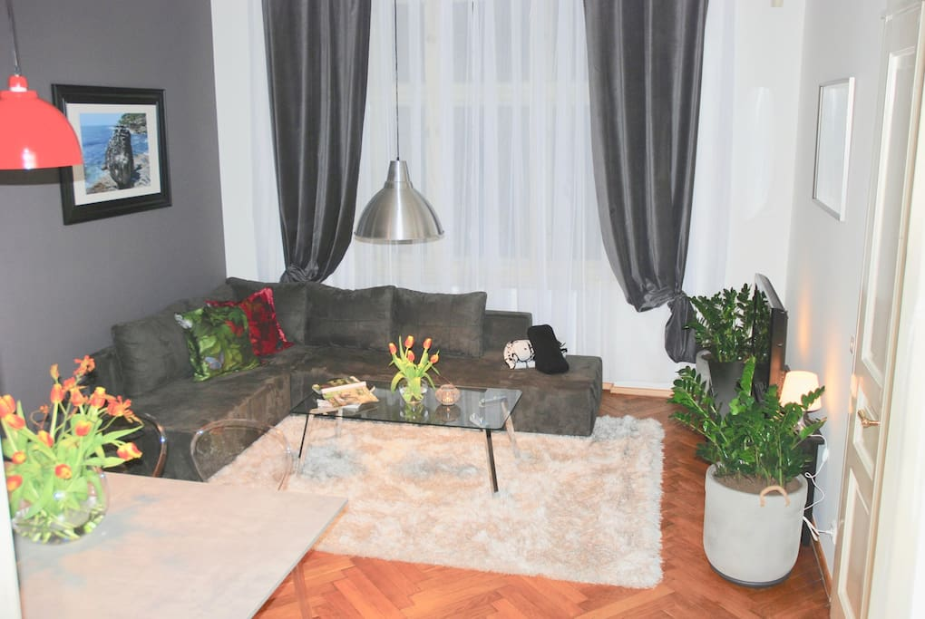 Living Room - Comfortable Sofa For 2 Extra Guests