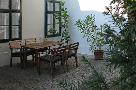 Quiet garden flat in a historic house - Wien - Wohnung