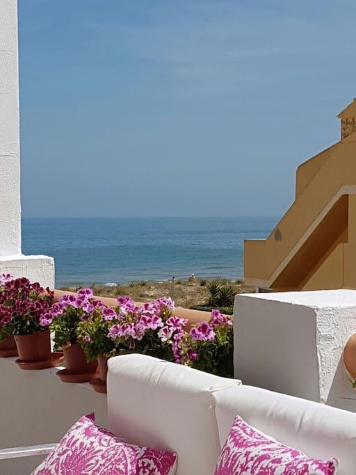 Desayuna en la terraza con vista al mar