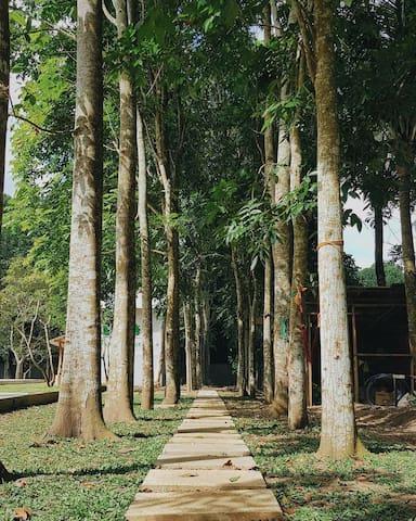 FarmEscape Lipa Private Resort