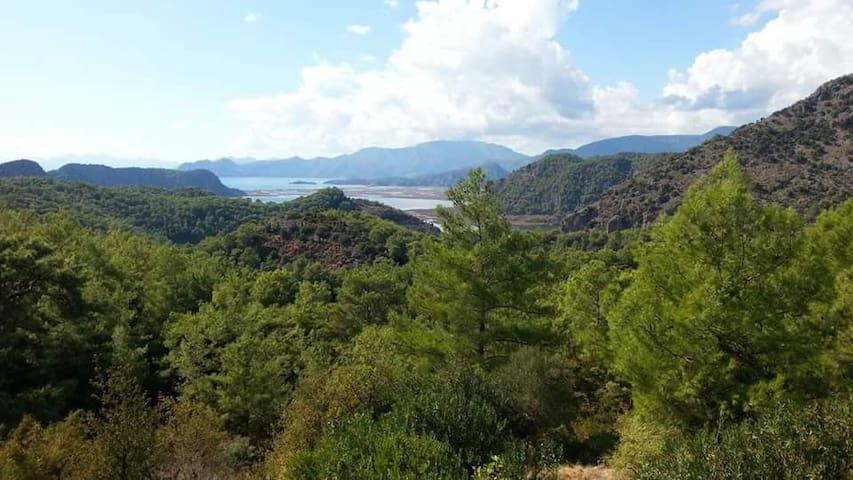 GÖKBEL -DALYAN-ORTACA-MUĞLA - Mugla - Dům