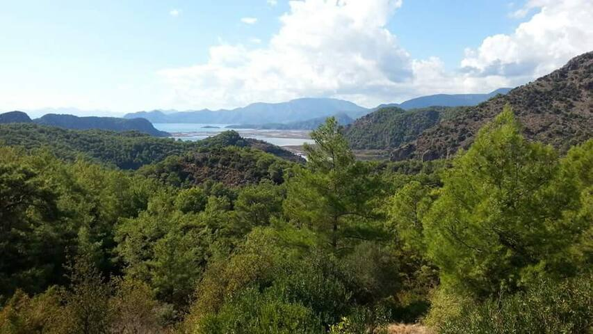 GÖKBEL -DALYAN-ORTACA-MUĞLA - Mugla - Casa