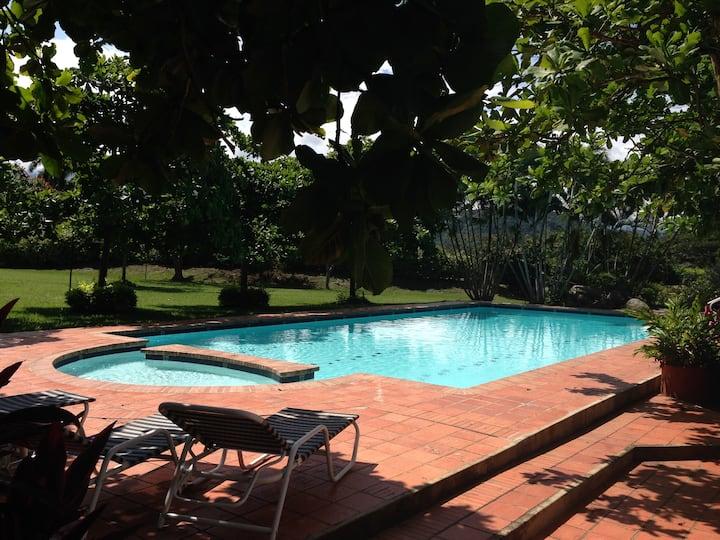 Tropical,  Divertida y Pintoresca (and Fun!)