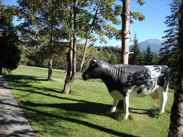 COUP DE COEUR! Appart. plain-pied en vieux bois - Crans-Montana - Lomamökki