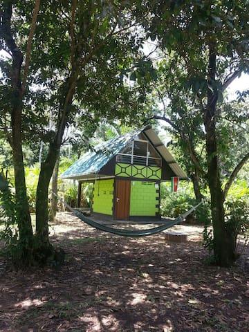 Jungle Cabana, Suriname - Meerzorg, Commewijne, Suriname - Дом