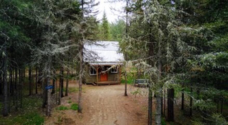 Camp de bûcheron vert